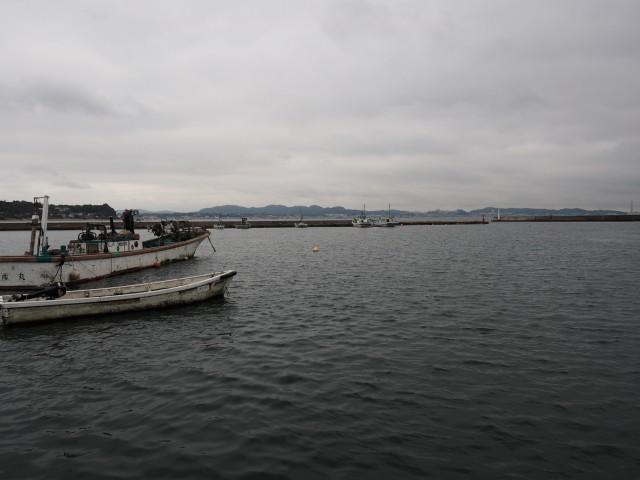 週末の雨の日!金田漁港の朝市か...